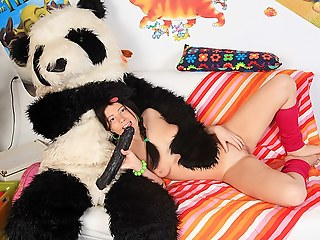 Pack with a teddy bear abstain from sexy copulation