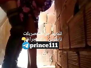 بيزنق اخته فوق السطح رقم الواتس للي عاوز ينام معايا 01098870956